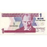Банкнота 1 лира. 2005 год, Турция.