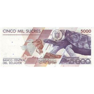 Банкнота 5000 сукре. 1999 год, Эквадор.