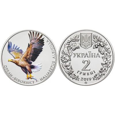 Орлан-Белохвост 2 гривны 2019 год, Украина.